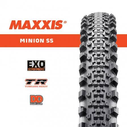 MAXXIS 29 x 2.30 MINION SS EXO/TR/SILKWORM 60TPI FOLDABLE