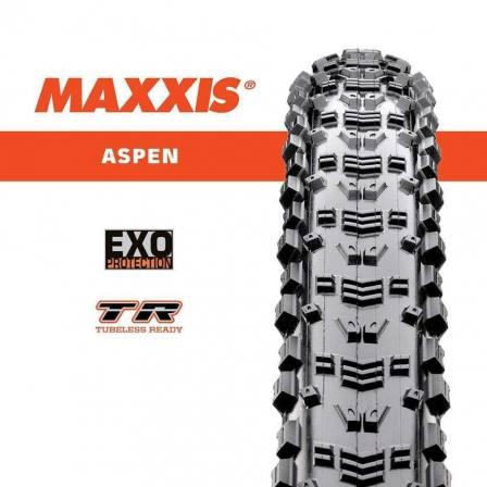 Maxxis 29 Aspen Mountain Bike Tyre