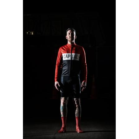 Capital Cycles Team Bib Shorts